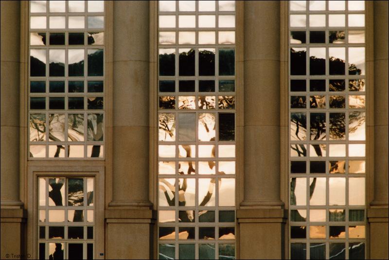 Montpellier, années 1990