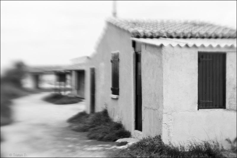 Cabanes du Salaison, Mauguio, 2009